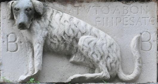 Ufficio Zen Wikipedia : Limited time offer up to off zen market items neverwinter